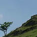 An image of piesanddovedale13