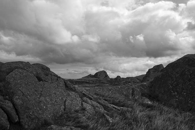 an image of Conwy wilderness 3